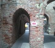 210501FIABVI_Cittadella_Ricci08