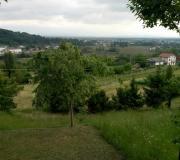 16maggio2021-Castelnovo_07